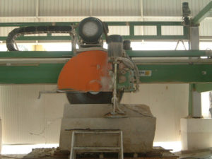 planta-manila-001
